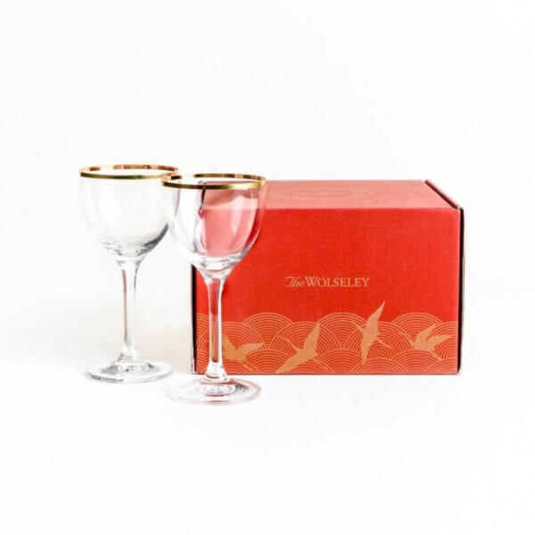 Two Martinin Glasses and Gift Box - The Wolseley